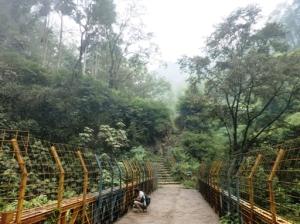 Taman Hutan Raya Insinyur Haji Juanda