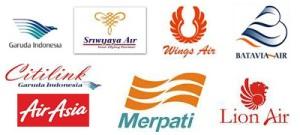 aneka logo airline