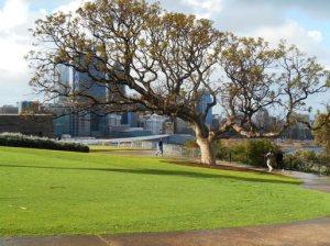 australia banget