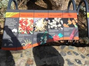 bunga daerah