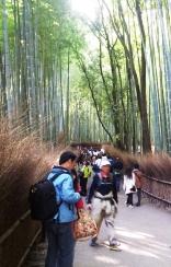 hutan bambu1