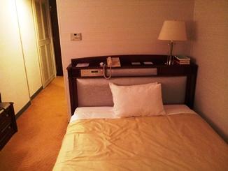 nikko osaka airport hotel3