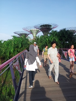 1 garden by the bay 2