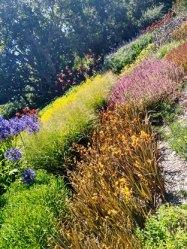 3-taman-botanic