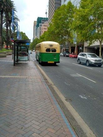5-bus-kuno