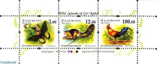 fauna srilangka