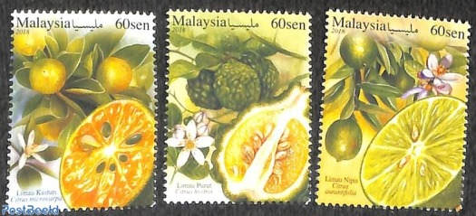 buah malaysia